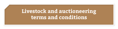 BKB-Buttons-Services-Livestock-&-Auctioneering-2-1