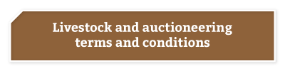 BKB-Buttons-Services-Livestock-&-Auctioneering-2-2