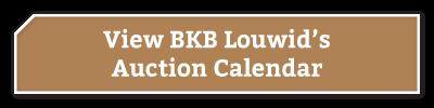 BKB-Buttons-BKB-Louwid-1-1