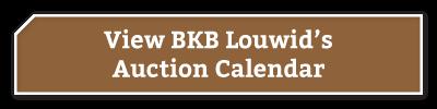 BKB-Buttons-BKB-Louwid-1-2