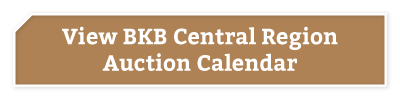 BKB-Buttons-Central-Region-1-1