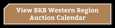 BKB-Buttons-Western-Region-1-1