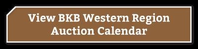BKB-Buttons-Western-Region-1-2