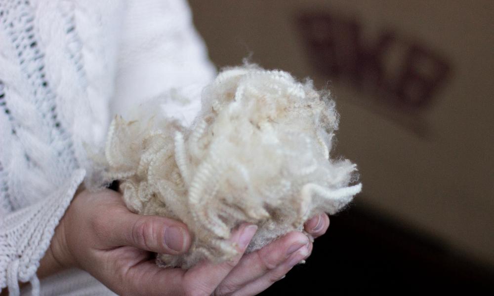 bkb-wool-market-report