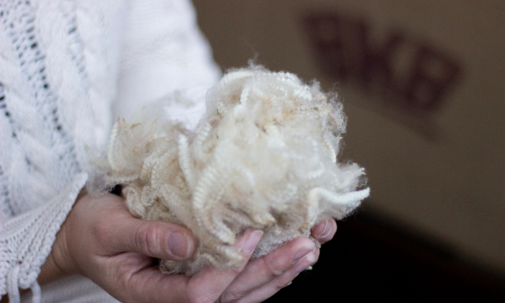 bkb-wool-market-report