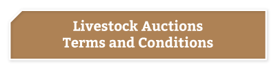 BKB-Buttons-Livestock-auctions-t's-and-c's-light
