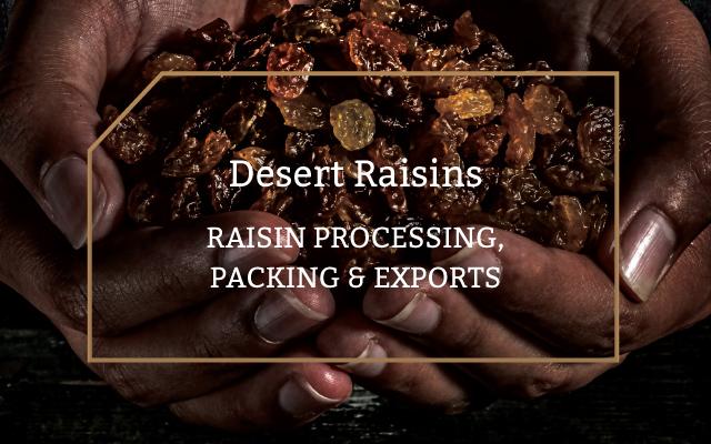BKB-Categories-Desert-Raisins-Light-Hover-02-updated